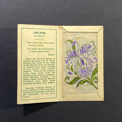 Orchid - Silk Embroidery 1933 Cigarette Card