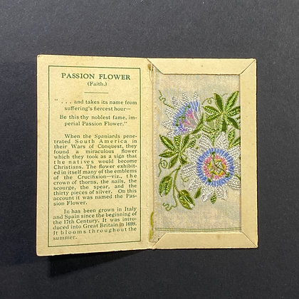 Passion Flower - Silk Embroidery 1933 Cigarette Card
