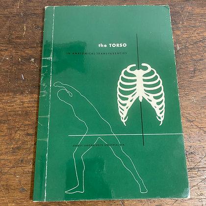 The Torso - Anatomical Transparencies