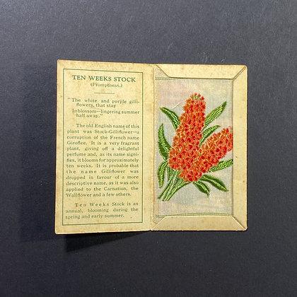 Ten Weeks Stock - Silk Embroidery 1933 Cigarette Card