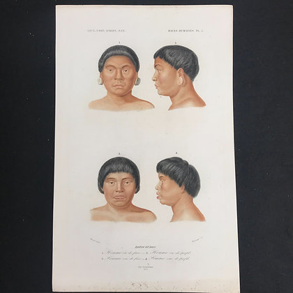 X 5 Races of the world 1863 Hand Coloured Prints