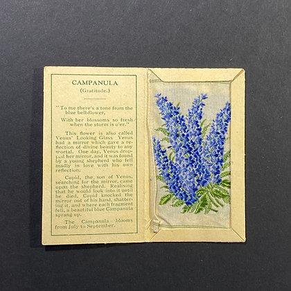 Campanula - Silk Embroidery 1933 Cigarette Card