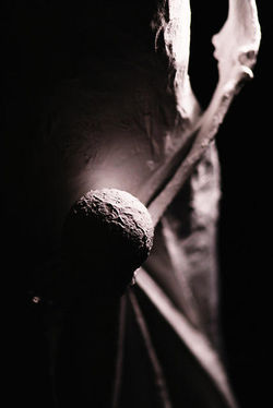5 sculptures la luz 12.jpg