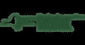 NYS Logo.png