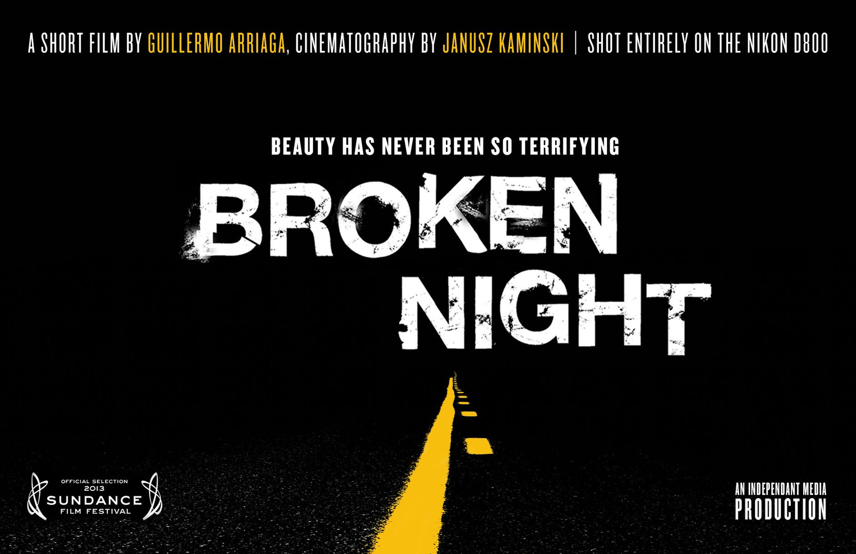 Nikon Broken Night