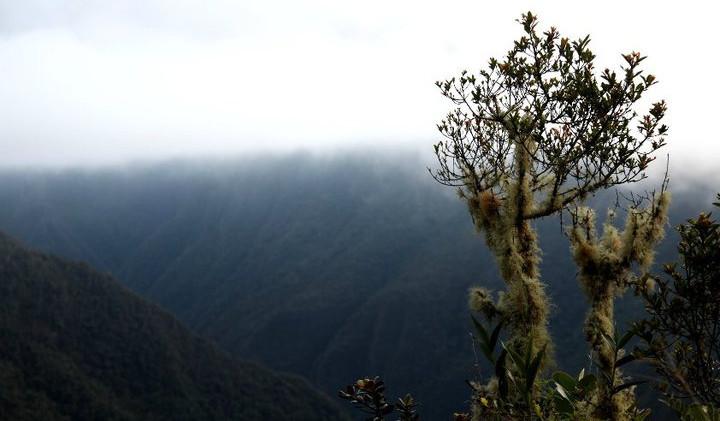 Machu Picchu 0004.jpg