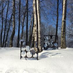 Среди берез.Among birches