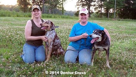 working catahoulas, working catahoula breeders, catahoula breeder, hunting catahoulas, hunting catahoula breeders