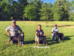2nd place 2017 Cow Dog Nationals