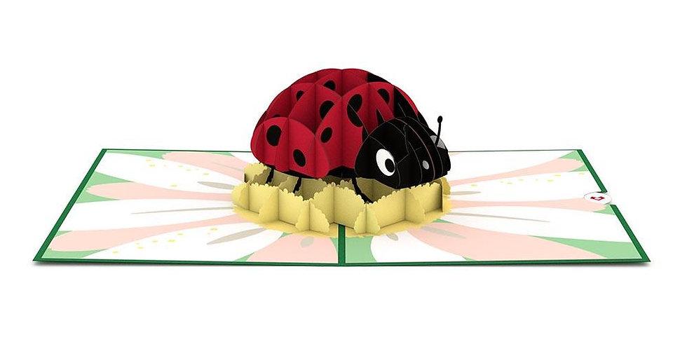 Ladybug 3D card