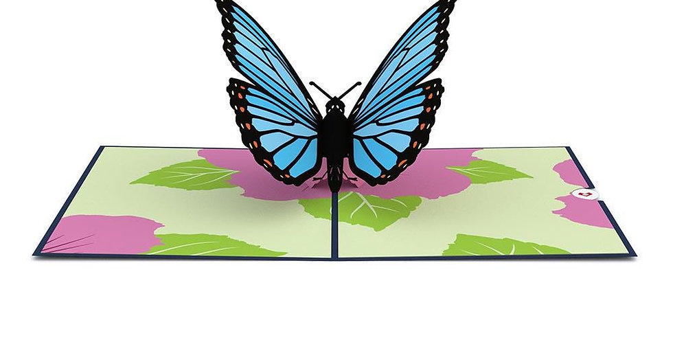 Blue Morpho Butterfly 3D card