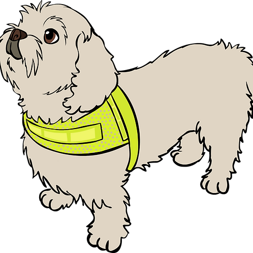 Reflective vest for small dogs