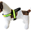 "Thumbnail: Reflective Harness 1"" width- for small dogs"