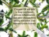 Coconut Oil Series - Coconut oil VS Hydrogenated Oils: The hard truth