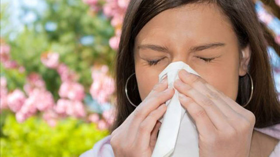 What Is An Allergy?