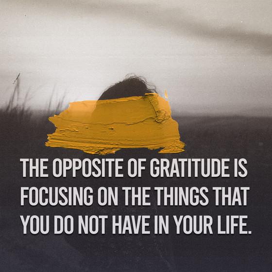 Attitude of Gratitude Series - How you can Learn Gratitude
