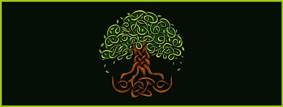 Living Tree Company's St Patrick Day