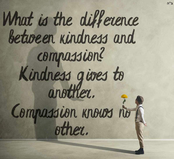 Compassion Series - The Benefits of Compassion