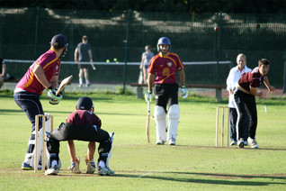 The Rattlesnakes TB T20 Cup run ends!