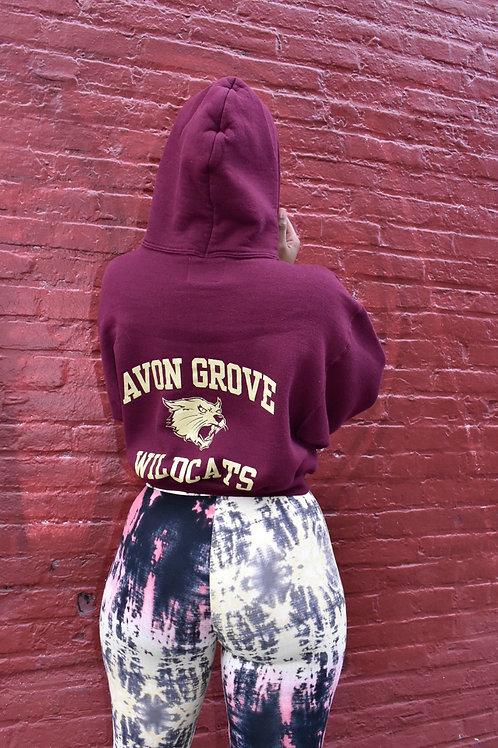 AVON GROVE