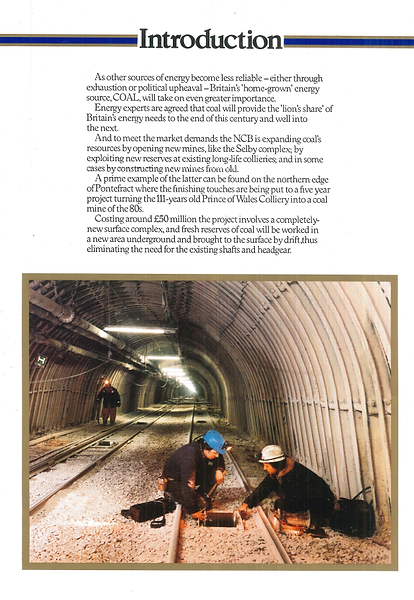 A heading saying introduction, followed by text.  Underneath is an image focused on two men working in a mining tunnel.  There is another man in the background.