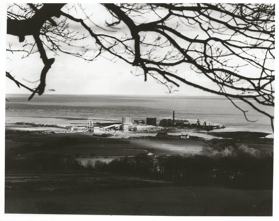 Image of Point of Ayr Colliery taken from a distance.  Whole colliery is visible.  The image is framed by a tree branch and the sea is visible.
