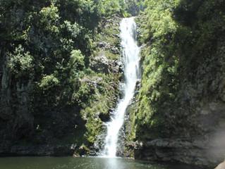 島根様、モオウラ滝チャレンジ