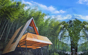 Triangle-house-.jpg