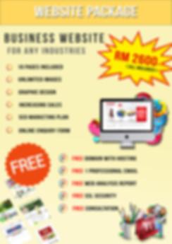 website business package