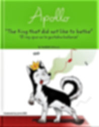 The king book cover.jpg