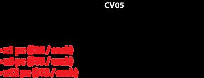 Covid_CV05_Desc_V2.png