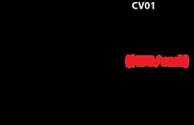 Covid_CV01_Desc.png