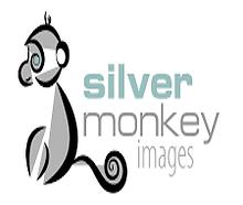 Silver-Monkey-2.png
