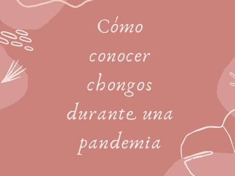 Amor durante una pandemia