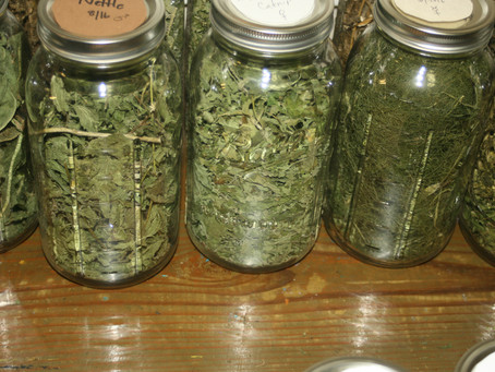 Storing Our Herbs