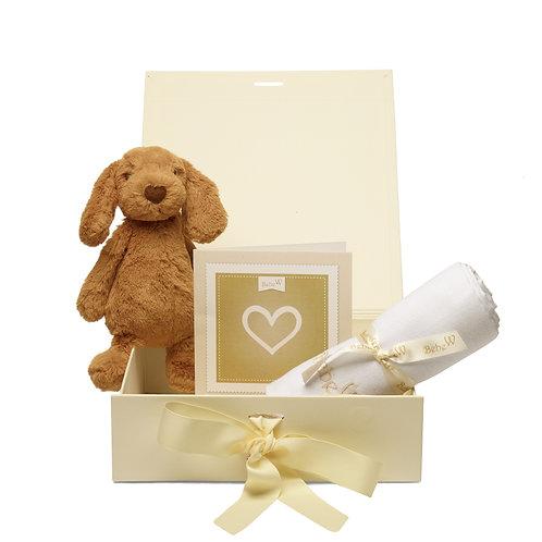 Box Combi Puppy