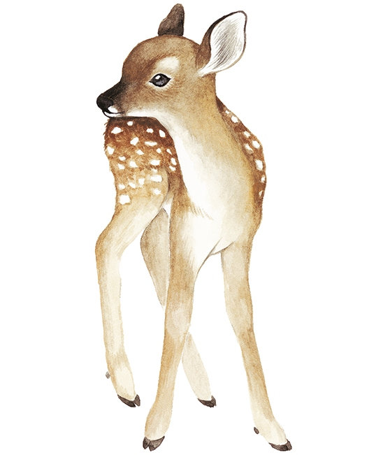 Wall Sticker Vintage Style - Fawn