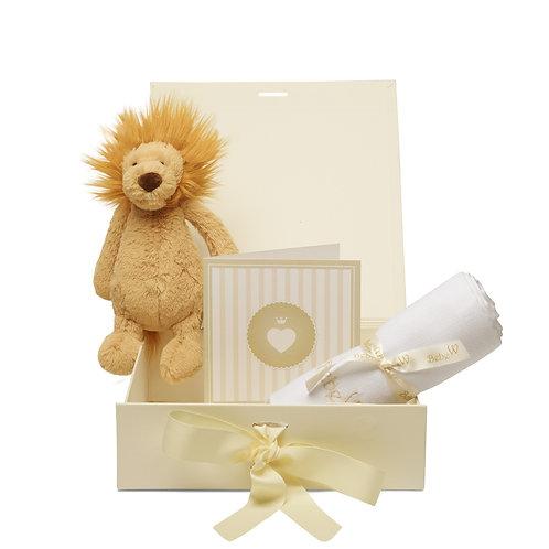 Box Combi Lion