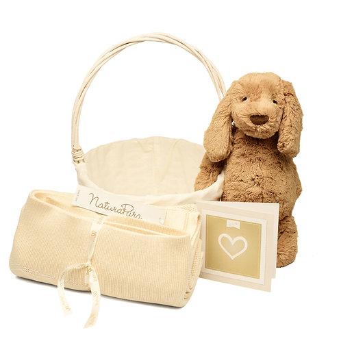 Basket Puppy Sonho