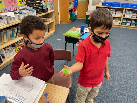 1st-2nd Grades Science
