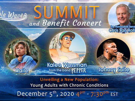 Invisible Summit and Benefit Concert