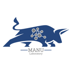 MANU BLUE AND SILVER.png