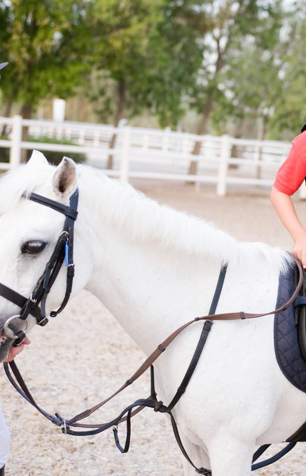Pony rit