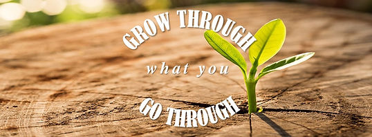 Grow Through What You Go Through.jpg