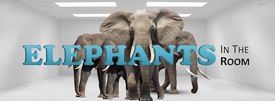 Elephants in the Room.jpg