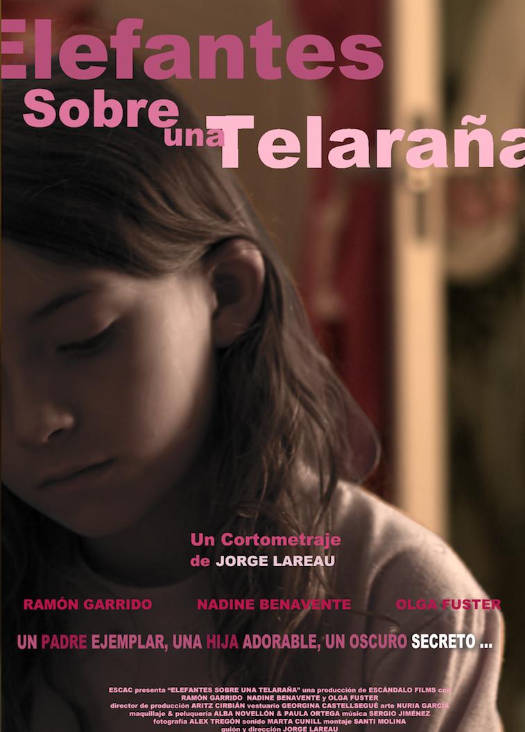 ELEFANTES_SOBRE_UNA_TELARAÑA_poster2.png