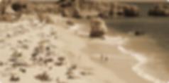 fww beach.png