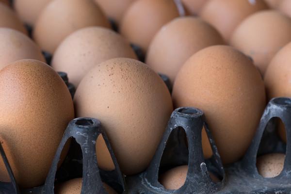 It's National Egg Day: 'Eggcellent!'