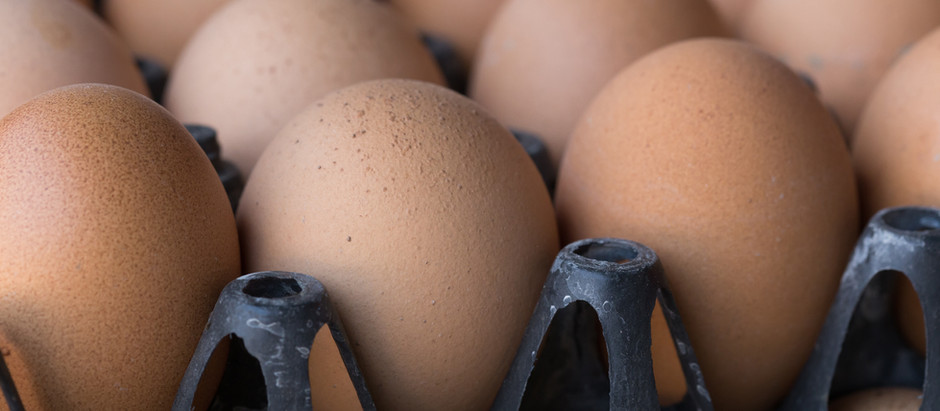 Eggs: A Perfect Protein