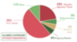 Physio Claims Illness Category Pie Chart